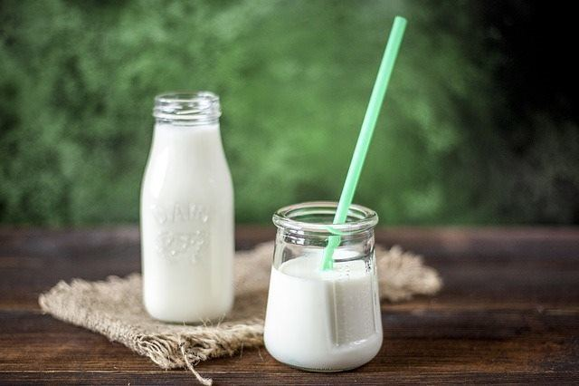 A glass of milk is contraindicated during the Coimbra protocol